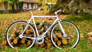 デマルキが板橋の 杜のまちや ときわ台 で期間限定ブ…|富山・朝日町で映画祭 バンフ・マウンテン・フィルム・…|ロータスが自転車競技で東京オリンピック2020に参戦…|他