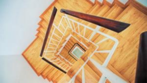 ニューヨークのインテリアブランドTRNK NYCが主…|隈研吾氏デザインの奈良公園内初となるラグジュアリーホ…|累計5万個販売のソウルジュエリーに 指輪 の新シリー…|他