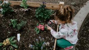 マーサ・スチュワート78歳 マイ除雪車で広大な自宅フ…|伝統 緑 がキーワード! 2020年最強パワース…|すぐできる!金運を引き寄せる玄関のつくり方|他