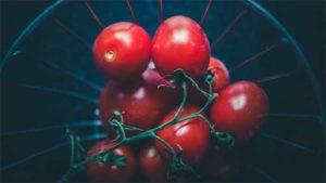 川崎麻世 家庭菜園のバジルでプロ顔負け手料理… 料理…|球根の植え方 チューリップやスイセンの球根でガーデ…|何 これ!?おしゃれなインテリアとしても使える植物が…|他