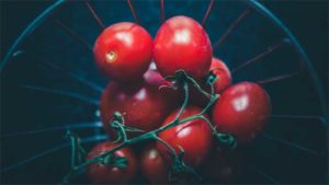 "NHK近江アナ ""幸せホルモン""のオキシトシンが出て…|NHK出版 みんなの趣味の園芸 に新機能 園芸相談…|家庭菜園 動画で配信 JAとぴあ浜松 栽培方法分か…|他"