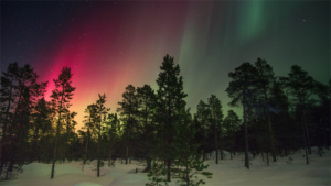 ヒュンダイ WRCフィンランドのドライバーラインナッ…|ノルウェーのイクメン3人が開発した肩車専用のベビーキ…|バルビル・シン氏死去 インドのホッケー名選手|他