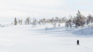 エサペッカ・ラッピ ブレイク明けで超高速のエストニア…|ノルウェー アンドーヤ島に巨大ホエールウォッチング施…|あこがれ掃除機 の最新版 Pure Q9 の進化を…|他