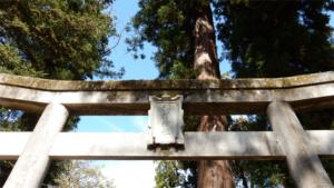 Ghost of Tsushima のコンセプトア…|秋のお月見と 月見団子|香川 地名 ケンミン性 樺川(=香東川)は良い香り…|他