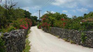 沖縄経済の回復 発展へどう動く? 各団体代表に聞いた…|速報 沖縄で新たに53人感染|県産シークヮーサー入り除菌スプレー アルコール臭なく…|他